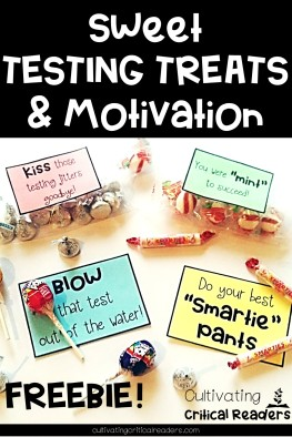 Sweet Testing Treats and Motivation